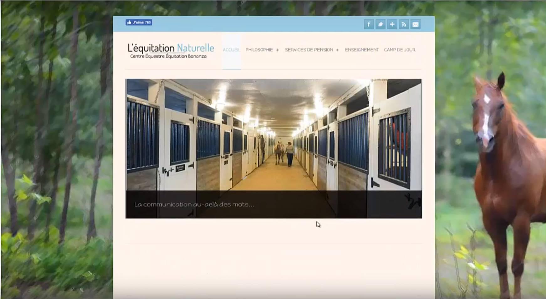 Protai-in : Agence web au cameroun - Equitation