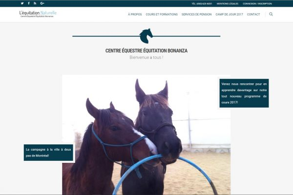 Agence web - Marketing digital - création site web - Protai-in - equitation bonanza