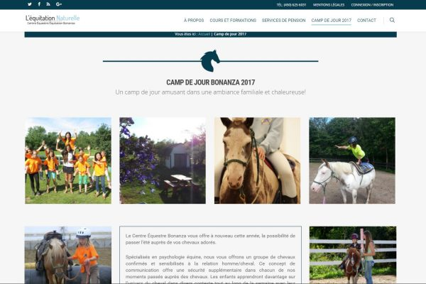 Agence web - Marketing digital - création site web - Protai-in -equitation bonanza